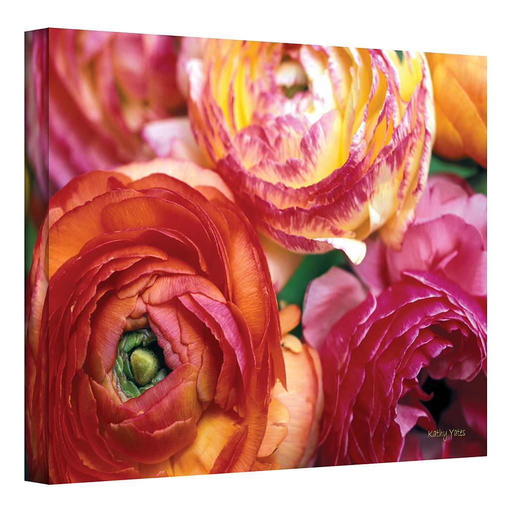 24'' x 36'' ''Ranunculus Close-Up'' Canvas Wall Art by Kathy Yates