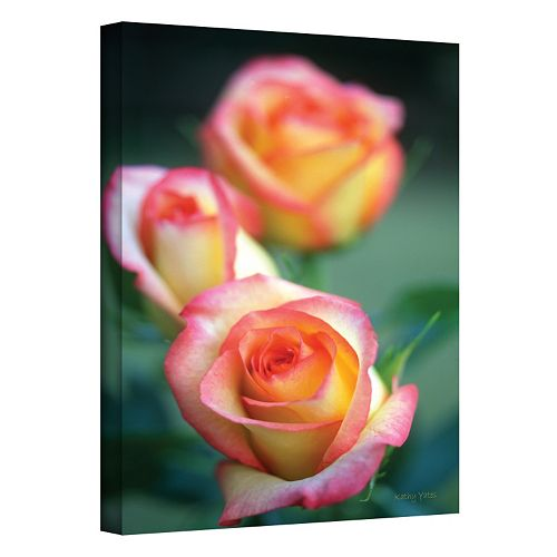 12'' x 18'' ''Rose Trio'' Canvas Wall Art by Kathy Yates