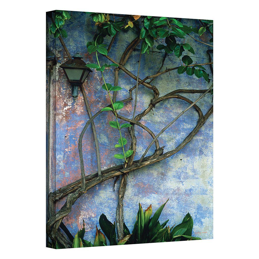 12'' x 18'' ''Vine & Wall'' Canvas Wall Art by Kathy Yates