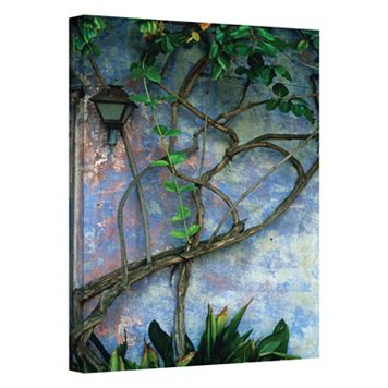32'' x 48'' ''Vine & Wall'' Canvas Wall Art by Kathy Yates