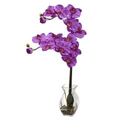 nearly natural Phalaenopsis Orchid Floral Arrangement