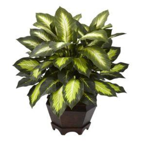 nearly natural Triple Golden Dieffenbachia Plant