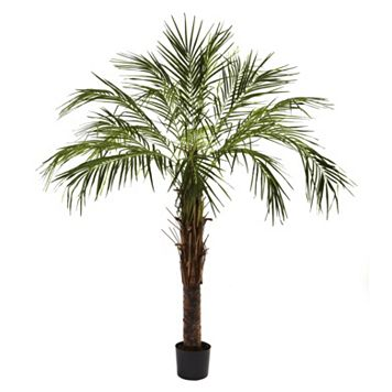nearly natural 6-ft. Robellini Palm Tree