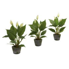 nearly natural 3-pc. Spathyfillum Arrangement Set