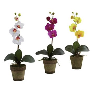nearly natural 3-pc. Potted Phalaenopsis Orchid Arrangement Set