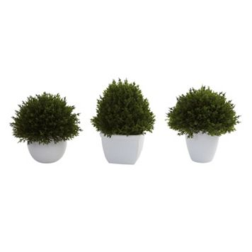 nearly natural 3-pc. Mixed Cedar Topiary Set