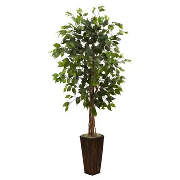 nearly natural 5 1/2-ft. Ficus Tree