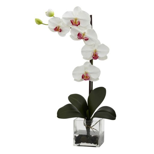 nearly natural Giant Phalaenopsis Orchid Arrangement