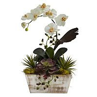 nearly natural Orchid & Succulent Arrangement