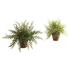 nearly natural 2-pc. Fern Arrangement Set