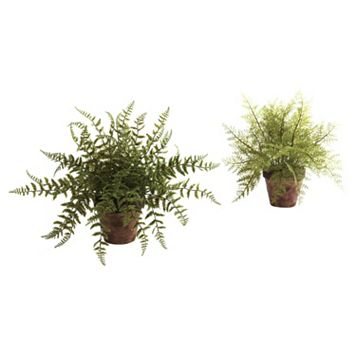 nearly natural 2-pc. Fern Arrangement Set