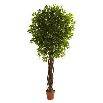 nearly natural 7 1/2-ft. Potted Ficus Tree - Indoor & Outdoor