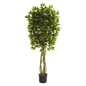 nearly natural 5 1/2-ft. Potted Ficus Tree - Indoor and Outdoor