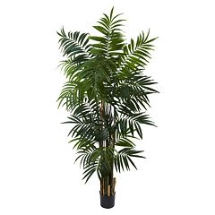 nearly natural 6-ft. Potted Bulb Areca Palm Tree