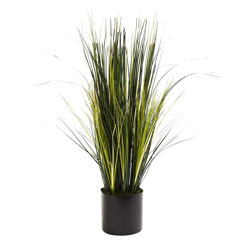 nearly natural Onion Grass Plant