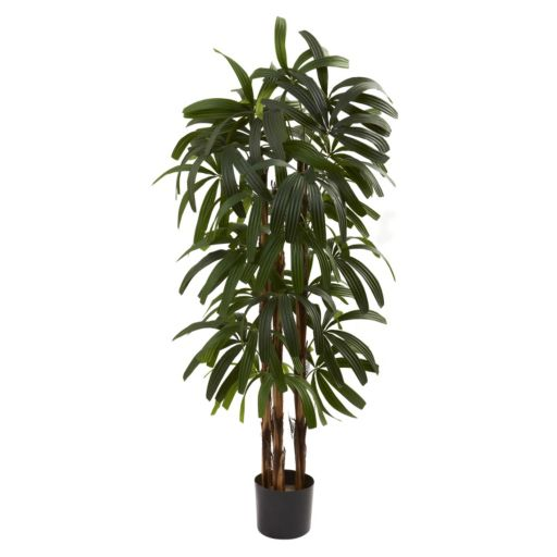 nearly natural 4-ft. Potted Raphis Tree