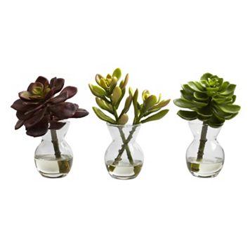nearly natural 3-pc. Succulent Arrangement Set