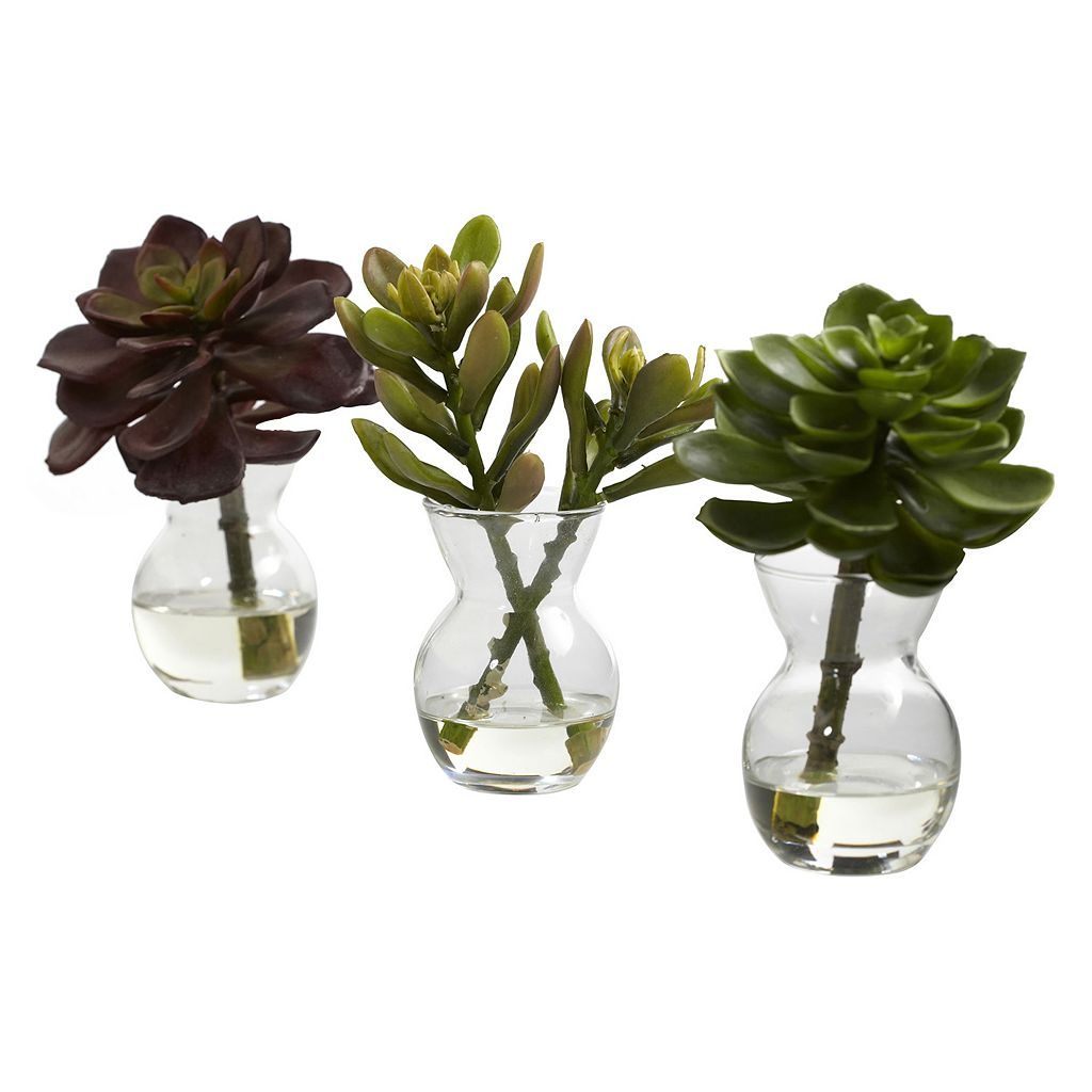 nearly natural 3-pc. Succulent Arrangement Set