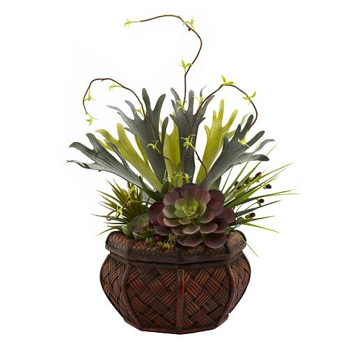 nearly natural Succulent Garden Plant