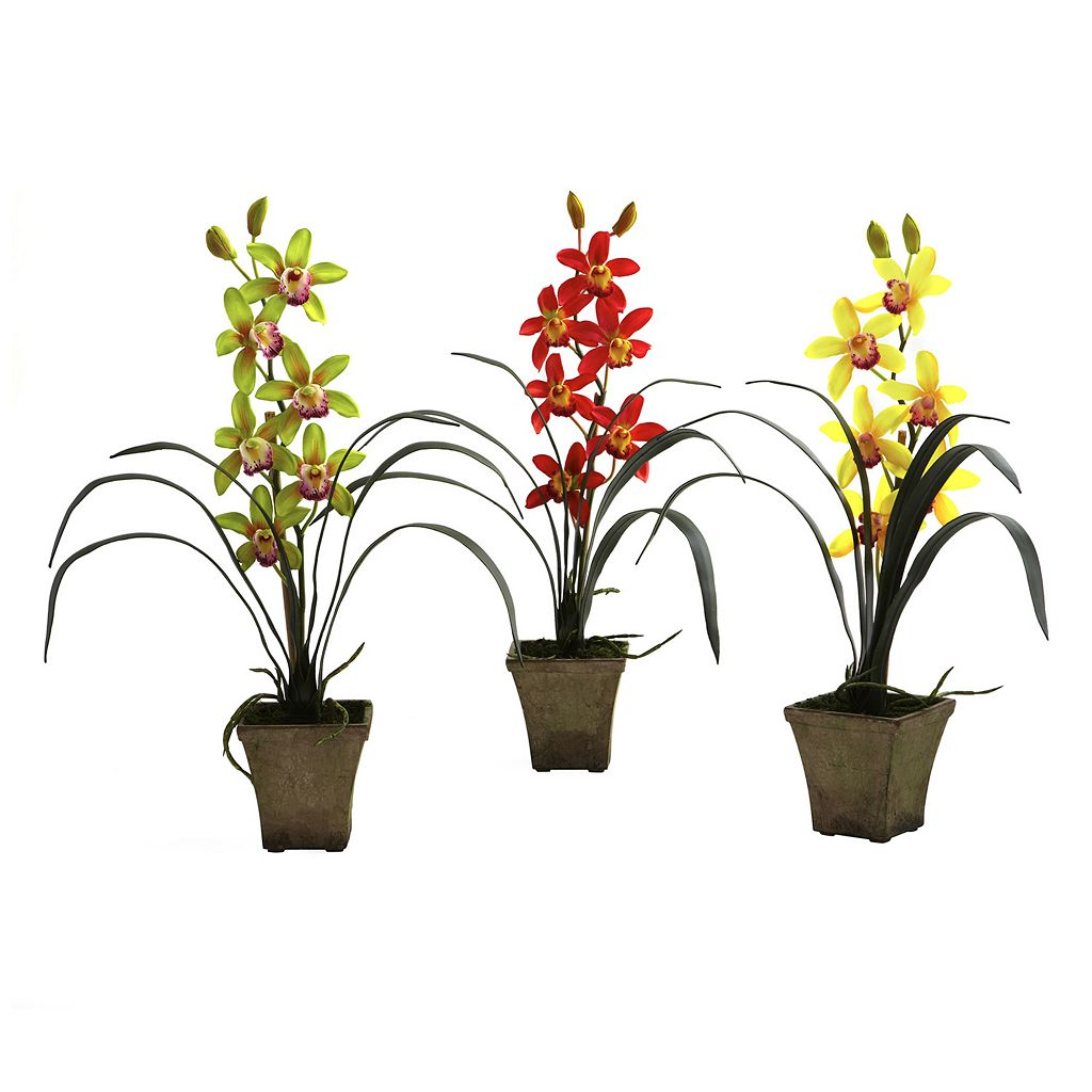 nearly natural 3-pc. Potted Cymbidium Orchid Arrangement Set