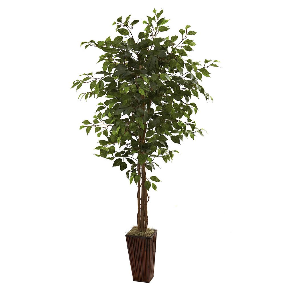 nearly natural 6-ft. Ficus Tree