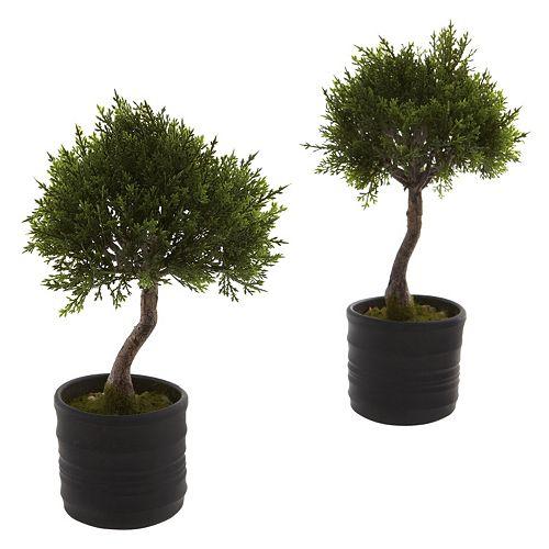 nearly natural 2-pc. Cedar Bonsai Set