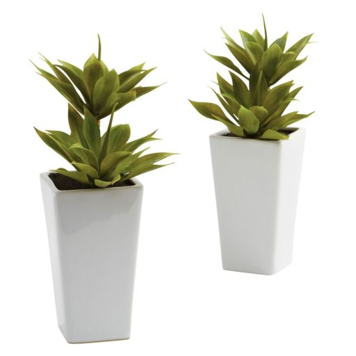 nearly natural 2-pc. Mini Agave Arrangement Set