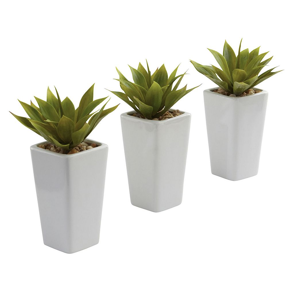 nearly natural Artificial Mini Agave Arrangement 3-piece Set