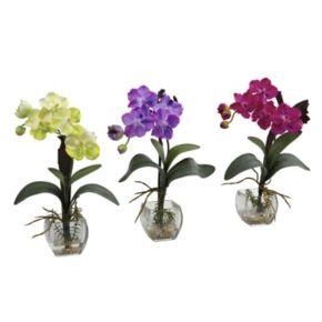 nearly natural 3-pc. Vanda Orchid Floral Arrangement Set