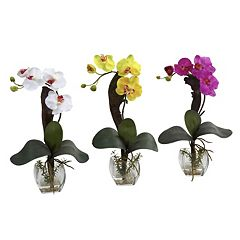 nearly natural 3 pc Phalaenopsis Orchid Floral Arrangement Set
