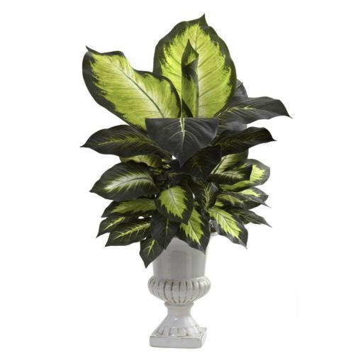 nearly natural Dieffenbachia Plant