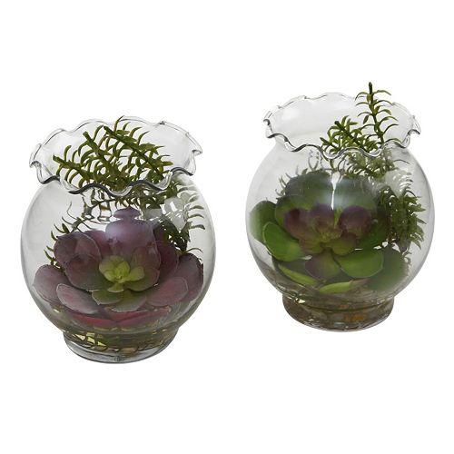 nearly natural 2-pc. Succulent Arrangement Set