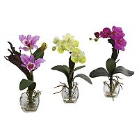 nearly natural 3 pc Mixed Orchid Arrangement Set