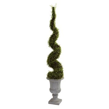 nearly natural Mohlenbechia Spiral Tree
