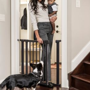 Winston and Sofie by Evenflo Walk-Thru Pressure Safety Gate