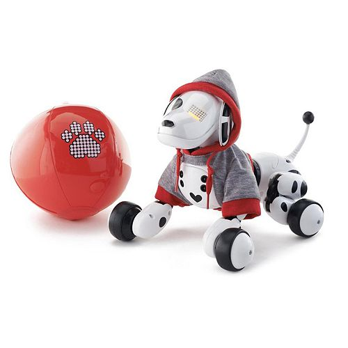 Zoomer Robot Dog with Hoodie & Ball Set by Spin Master