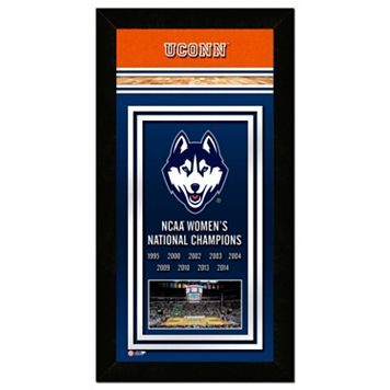 UConn Huskies 2014 NCAA Women's Basketball Champions 14.5