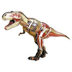 4D T-Rex Anatomy Model by John N. Hansen Co.