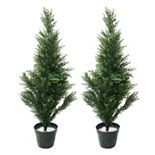 Navarro 2-pc. Potted Cedar Tree Set - Indoor & Outdoor