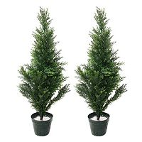 Navarro 2 pc Potted Cedar Tree Set - Indoor & Outdoor