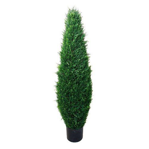 Navarro 41-in. Potted Cypress Topiary - Indoor & Outdoor