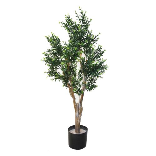 Navarro 41-in. Potted Ixora Chinese Tree – Indoor and Outdoor