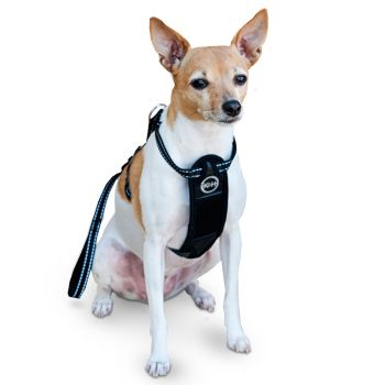 KandH Travel Safety Pet Harness - Extra Large