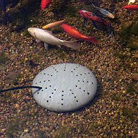 K&H Perfect Climate Submersible Pond Heater