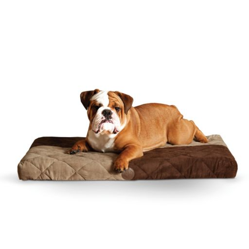 KandH Quilted Memory Dream 3 1/2-in. Thick Pet Bed - 27'' x 37''