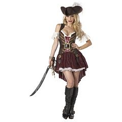 Swashbuckler Pirate Costume Adult by