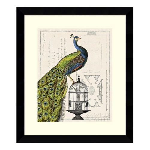 ''Peacock Birdcage I'' Framed ...