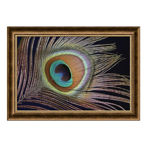 ''Sumptuous'' Peacock Framed Art Print