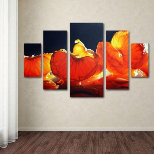 Mandarin Orange 5-piece Canvas Wall Art Set