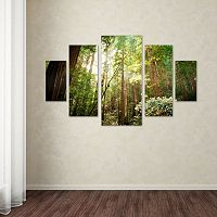 Muir Woods 5 pc Canvas Wall Art Set